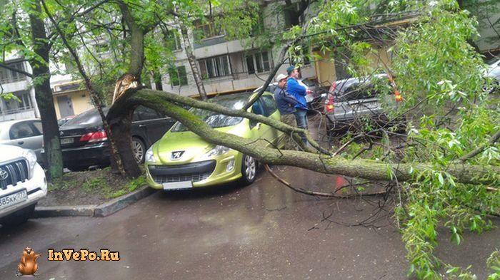 vezenie-nastoyaschee-znachit-avto-avto-kartinki-avto-video-motocikly_6335872239