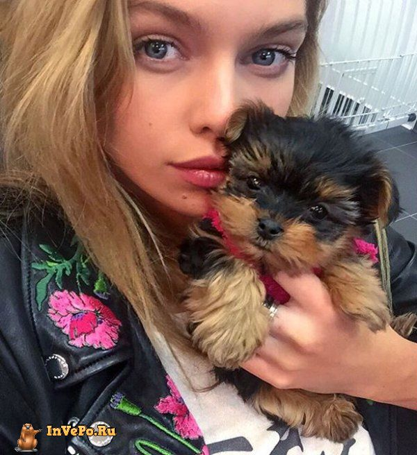 theres-a-reason-stella-maxwell-just-topped-the-maxim-top-100-list-18-photos-16