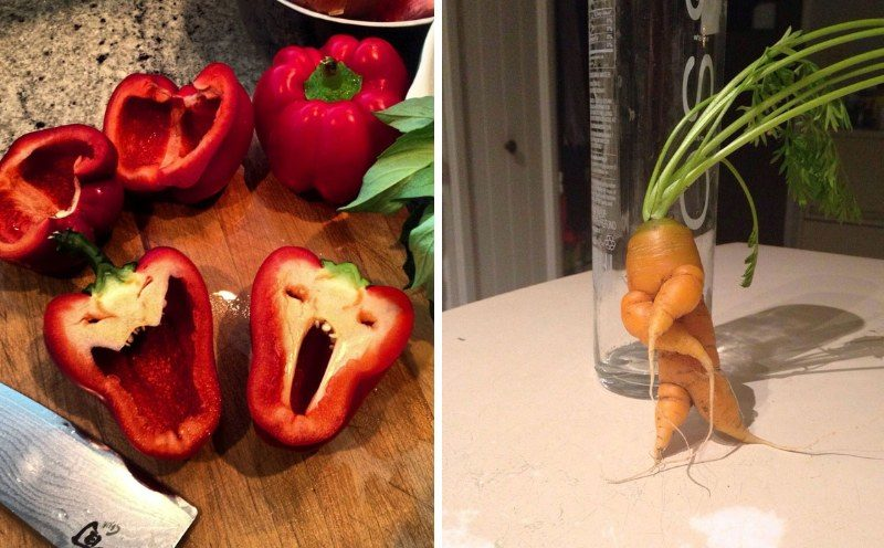 Фрукты и овощи необычной формы, на них нужно посмотреть дважды (25фото)