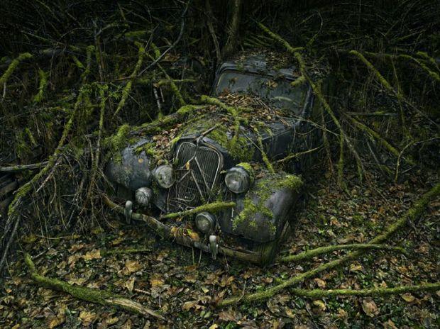 Призраки: Фотографии брошенных автомобилей медленно утилизированных природай
