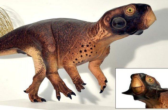 4. Настоящий пситтакозавр