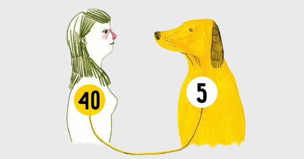 Как узнать сколько питомцу лет?
